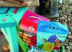 Подкормки для плодово-ягодных растений в сентябре