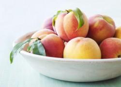 Персик урожайнее абрикоса