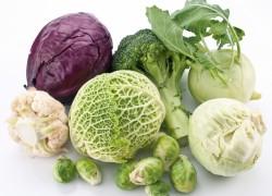 Капуста, овощ для тех - кто хочет жить долго