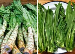 Спаржевый салат уйсун