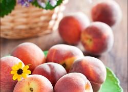 Морозостойкие сорта персика