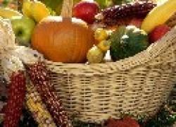 Планируем щедрый урожай на 2013 год