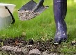 Как подготовить посадочные ямы