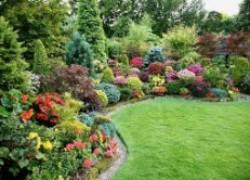 Чем защитить сад после дождей