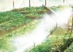 Туманообразующие установки Шохина