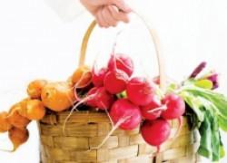 Что посеять на место ранних овощей