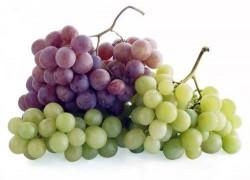 Причины плохого урожая винограда