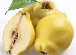 Золотистое яблоко