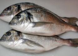 Свежая рыба вылечит косточку на ноге