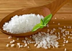 Против вредителей и болезней берем на вооружение соль