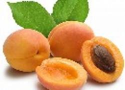 Как спасти абрикос