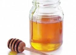 Мёд – стимулятор жизни саженцев винограда