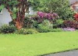 Зеленая лужайка - это легко
