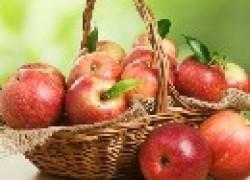 Сорта яблок, которые долежат до мая