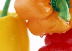 Проблемы при выращивании сладкого перца