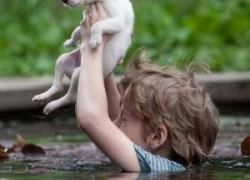 Человечность – это чувство. которым нужно делится