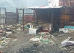 Пятилетняя девочка в Волгодонске живет в сгоревшем доме и ест собак