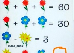 Отгадайте загадку: сколько цветочков на фото?