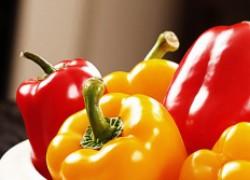 Выращивание перцев на семена