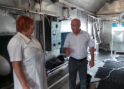 В Горькой Балке Краснодарского края с молоком проблема решена