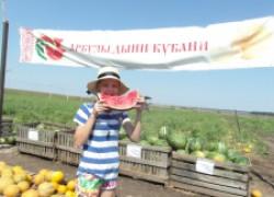 Бахчевод алимов делится опытом выращивания арбузов и дынь