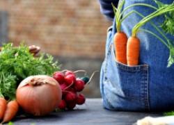 Йод и подкормит, и защитит ваш урожай