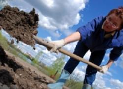 Действенные методы обеззараживания почвы