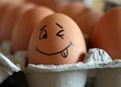 10 безопасных средств из кухни, которые справятся с вредителями