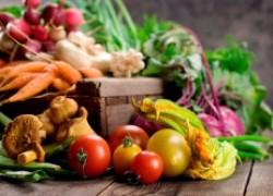Самое важное о прививке овощей