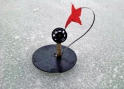 Как ловить щуку на жерлицы зимой
