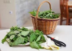 Супер эффективное удобрение для растений из крапивы и хлеба