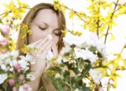 Весенняя аллергия – полиноз