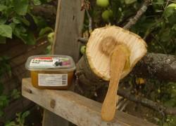Садовый вар на защите ран деревьев