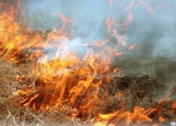 Чем опасен весенний поджог травы