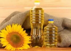 Россия — главный экспортер подсолнечного масла