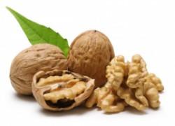Проблемы грецкого ореха