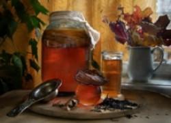 Чайный гриб: вредный или полезный?