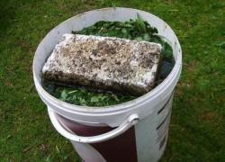 Как правильно готовить вытяжку органики