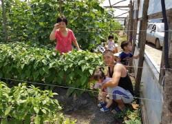 Секрет от фермера со Ставрополья Леонида Кима