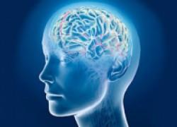 Пять простых способов улучшить работу мозга