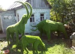 Когда зеленые фигуры оживают, или топиарий – выгодное занятие