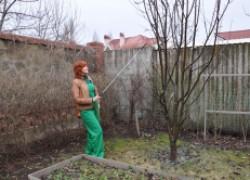 Что подготовить для ранневесеннего опрыскивания сада