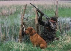 Готовимся к охоте на утку