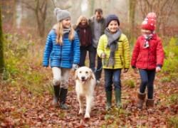Прогулки в парке: советы бывшего медика