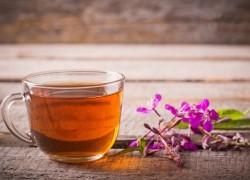 Иван-чай – напиток на все времена