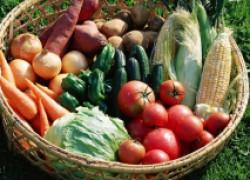Способы сохранения урожая