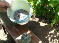 Заряжаем виноградник на будущий сезон
