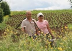 Что такое натуральное земледелие?
