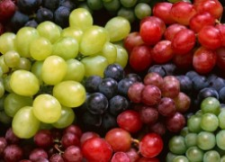 Сорта винограда, от которых мы избавились