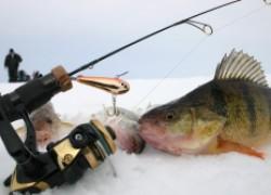 Особенности рыбалки в глухозимье